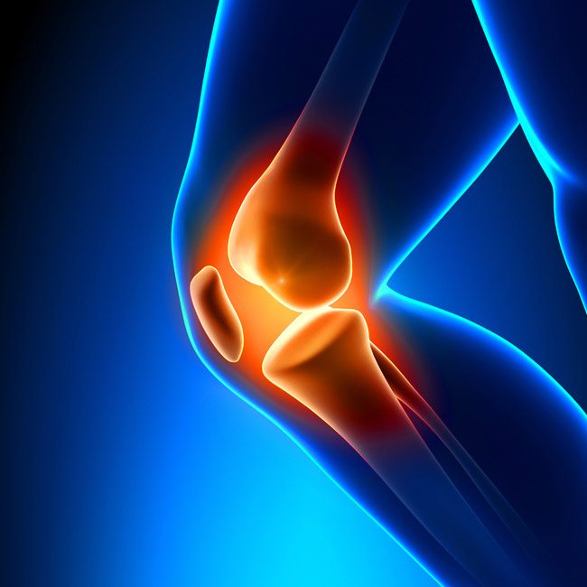 Telma Grant, P.T. Private & OHIP physiotherapy and Chiropractic. If you're in pain, call us. We can help.